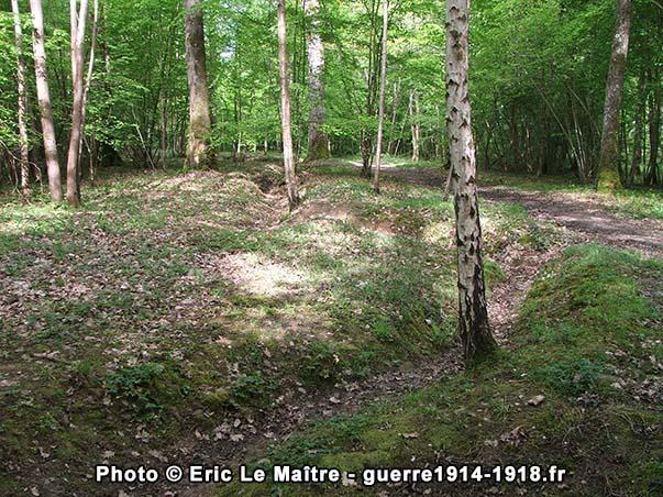 Vestiges de tranchées dans le bois Belleau