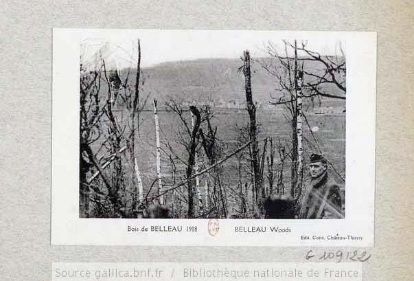 Bois Belleau en 1918