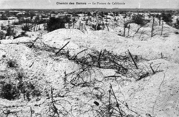 Le paysage au lendemain de la guerre avant l'intervention des Eaux et Forêts