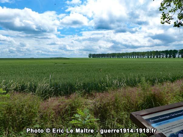 Panorama du champ de bataille du 5 septembre 1914 en direction de Penchard et du bois du télégraphe que l'on aperçoit en arrière-plan au centre de la ligne d'horizon