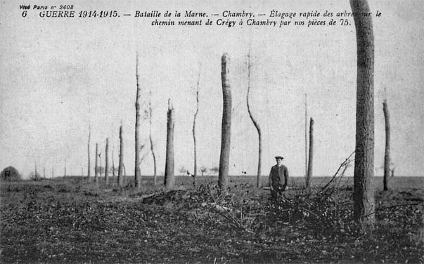 Dégâts occasionnés par l'artillerie française sur les arbres de la route Crégy à Chambry